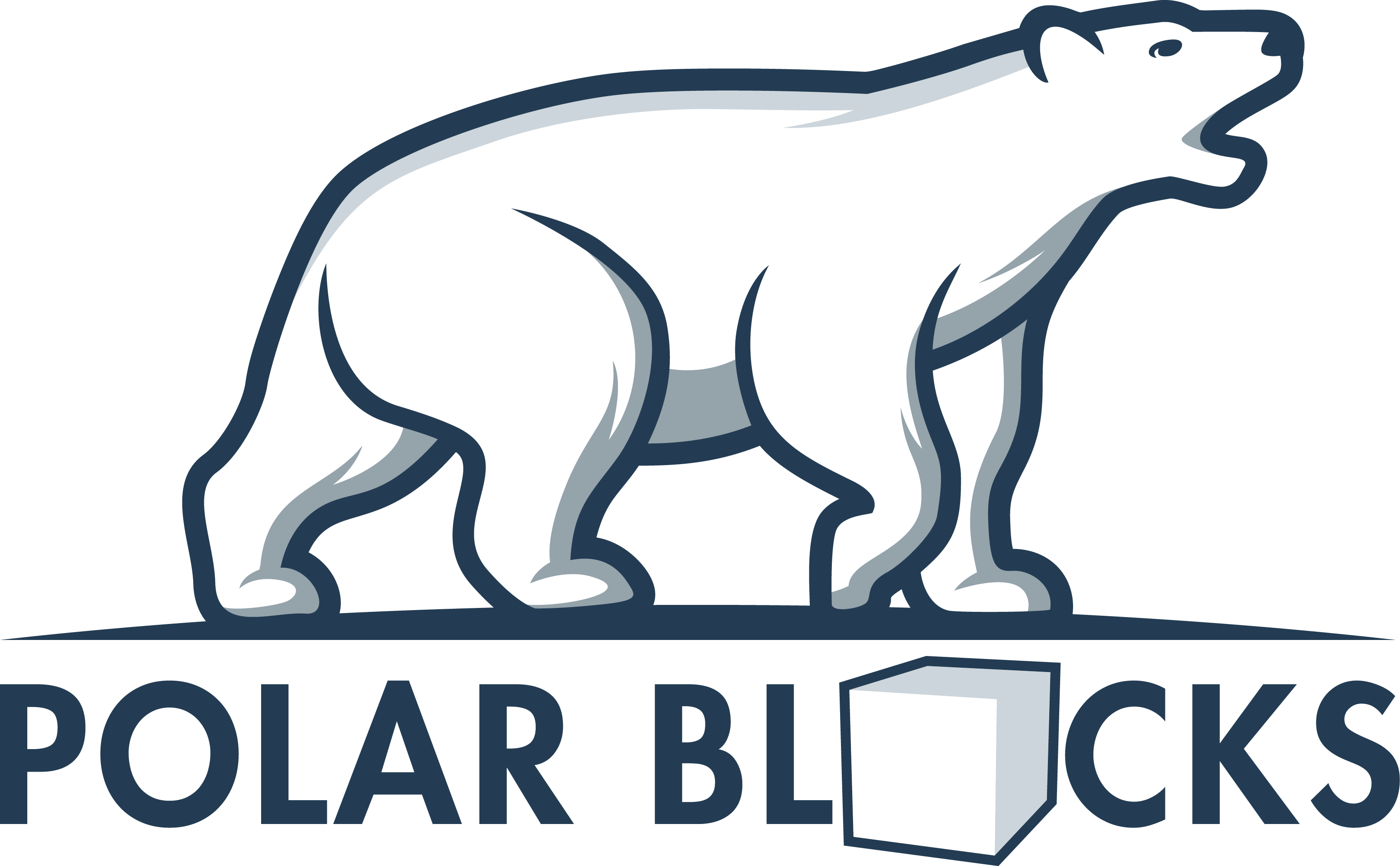 POLAR BLOCKS